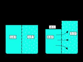 diagram explaining osmotic pressure