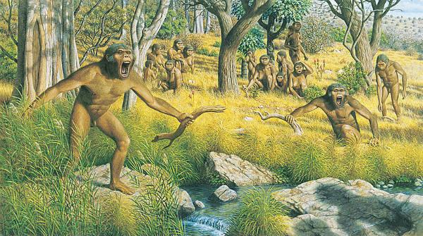 Australopithecus anamensis family