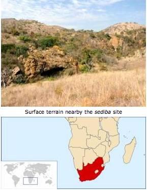 australopithecus sediba site