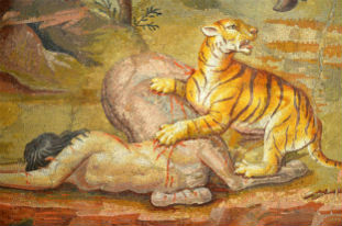 centaur prey of tiger
