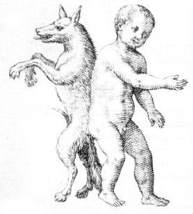 human dog hybrid drawing