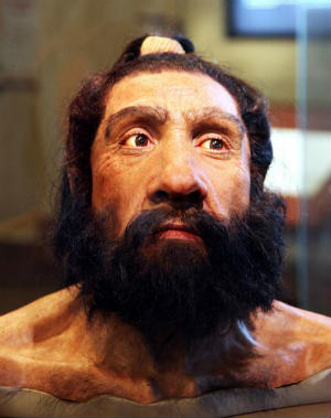 picture of homo neanderthalensis