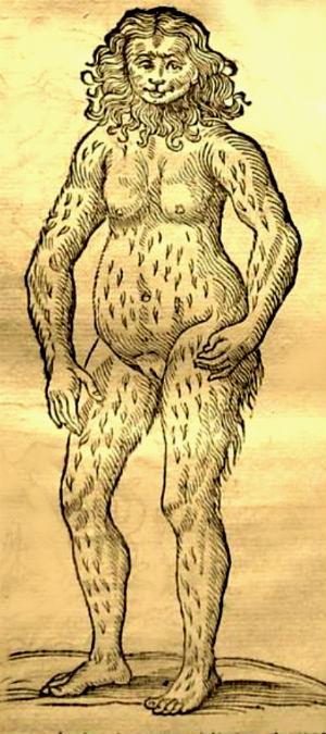 orangutan-human hybrid