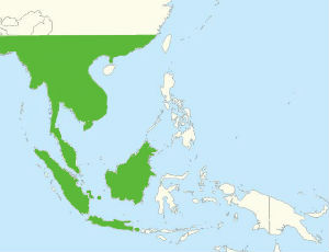 Former range of the orangutan