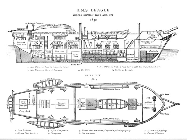 Plan of the Beagle