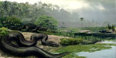 TITANOBOA lived in the earliest known neotropical rainforest