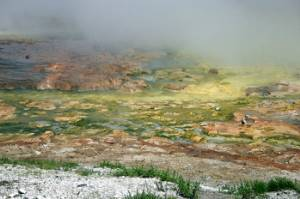 Hot spring in Yellowstone National Park.