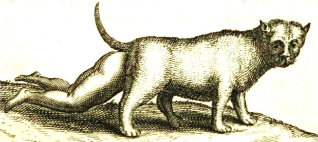 cat-human hybrid