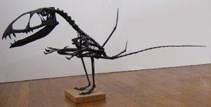 pterosaur Dimorphodon macryonx