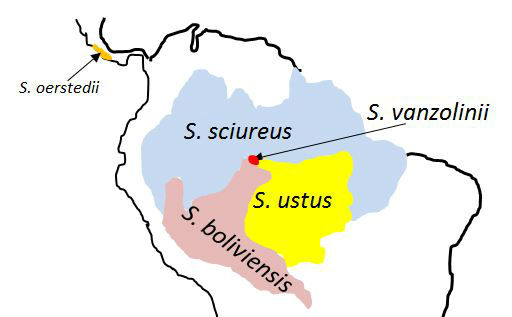 Squirrel monkey distributions in South America